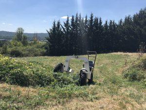 Tracteur électrique ALPO Enjambeur
